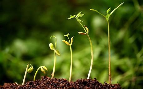 Measuring Green Growth: The Limits of GDP