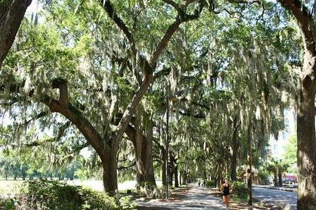 36 Hours In Savannah