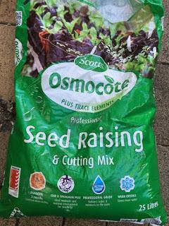 Sowing seeds to ease the covid boredom