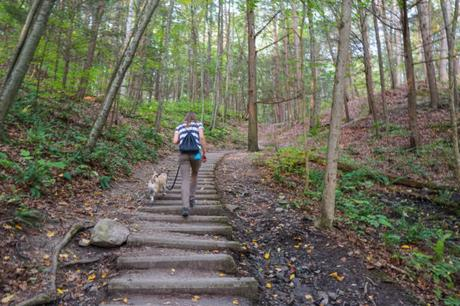 Hiking at the Gorgeous Robert H. Treman State Park Near Ithaca