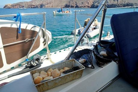 Cruising untethered in the Sea of Cortez