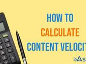 Content Velocity: What Important Calculate