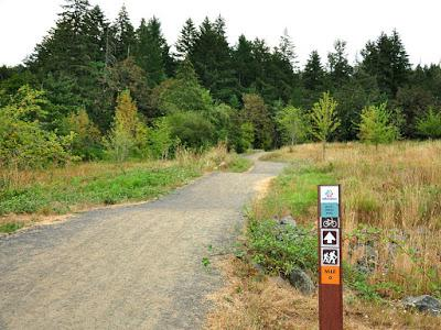HIKING IN THE THURSTON HILLS NATURAL AREA NEAR EUGENE, OREGON Guest Post by Caroline Hatton at The Intrepid Tourist