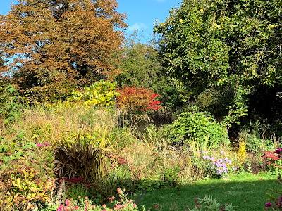 A letter to the garden October 2020