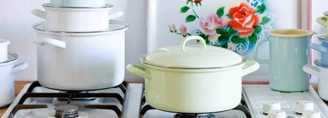 Enamel roasting pans