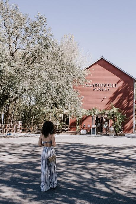 Return to Dry Creek Valley: A Zinfandel Tour