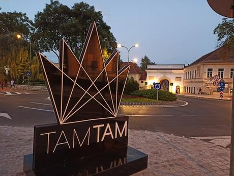 An Event to Remember: TAMTAM Festival 2020