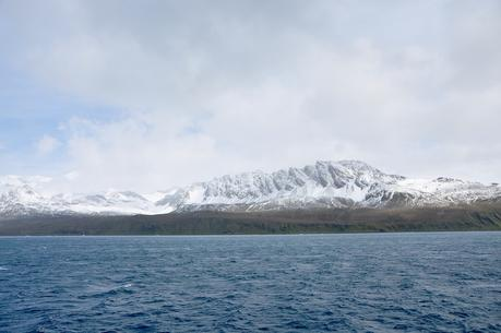 "South Georgia Island Under Threat From ""World's Largest Iceberg"""