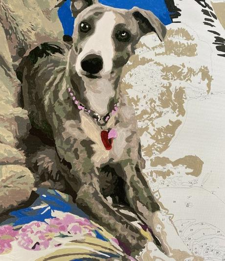 Paint by numbers photo of your pet