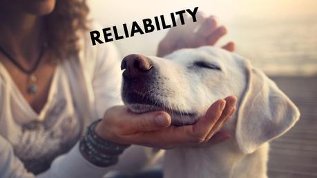 How to Improve Your Reliability as a Small Business