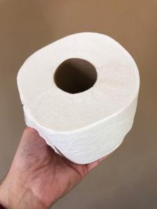 Toilet Paper Redux