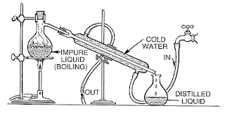 Distilling - Mary Quant Socks