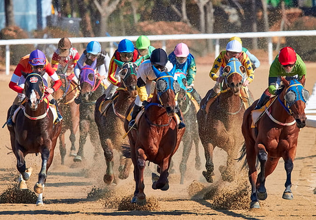 Why Horse Racing Is Like No Other