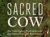 Sacred Review: Bold, Transparent Look Case Better Meat