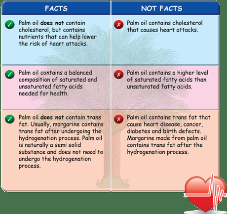 Top 5 Palm Oil Myths & Facts you Need to know