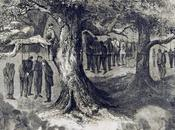 Children Lost Their Fathers Lynching Single Because Conspiracy Theory