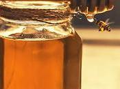 Honey Paleo?
