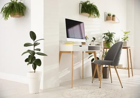 Tips for Creating Your Dream Office