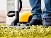 Carpet Cleaning Very Significant