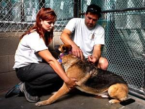 Amazing Rescue Story! Los Angeles Times