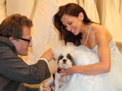 Wedding Century