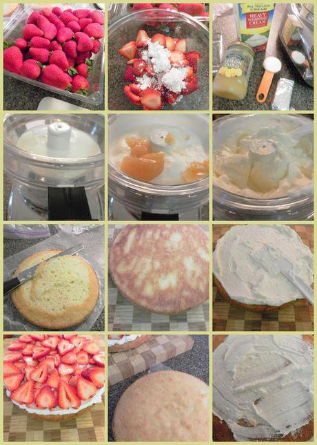 Sponge cakes - FILLING collage