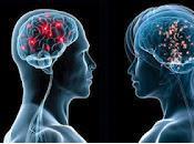 WOMEN Human Brain Analysis