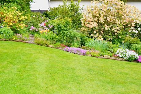 5 Expert Tips for Applying the Best Lawn Fertilizer