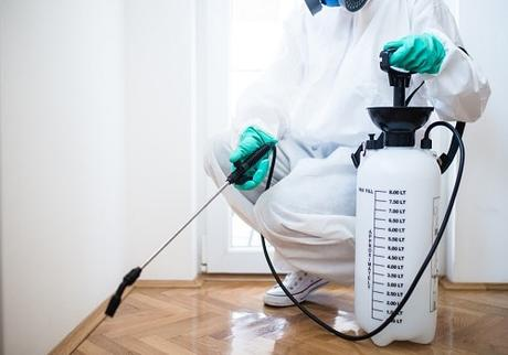Effective Pest Control Services for Residential Spaces