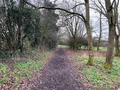 The Snowdon Chronicles - back on the path again