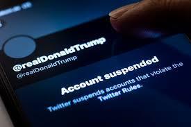Free speech and America's escalating crisis of Trumpist insanity