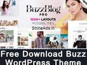 [GPL] Free Download Buzz WordPress Theme v4.9.7