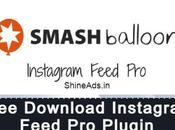 [GPL] Free Download Instagram Feed v5.10 [Smash Balloon]