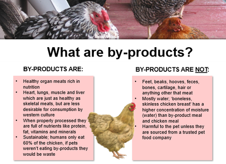 Truth about by-products in pet food