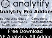 [GPL] Free Download Analytify Addons