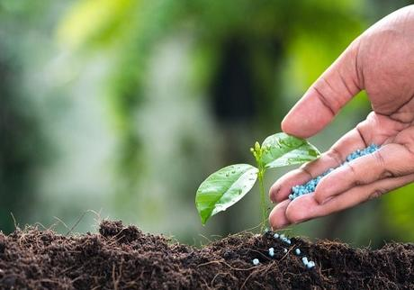 How to Boost Your Soil With the Right Fertilizer
