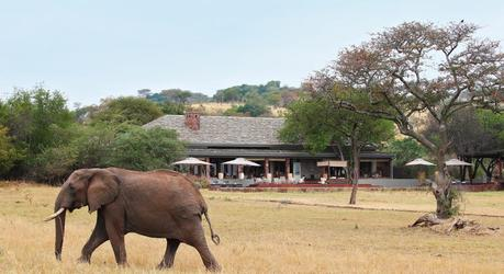 Singita Serengeti