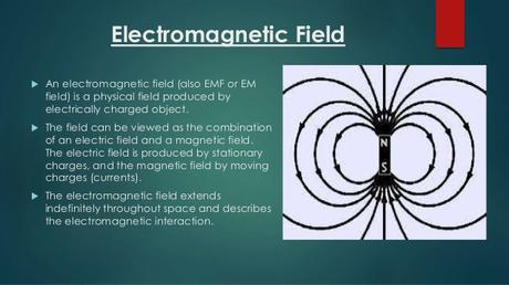 Electromagnetic Fields Online Book | Free Bengali Pdf Book Download