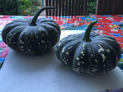 Pam's perfect pumpkins