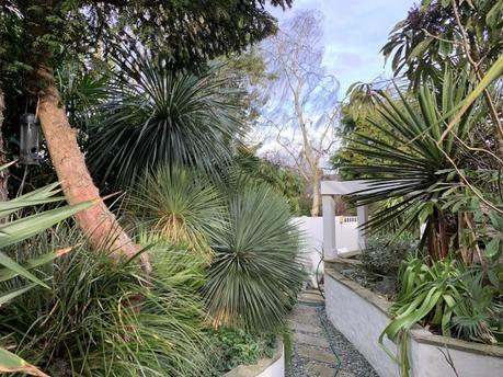 The Garden in Late February