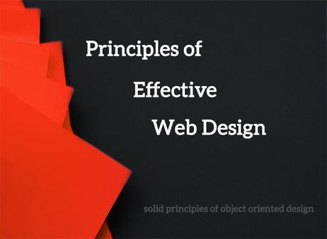 Web Design Principles That Are Crucial to Know For 2020