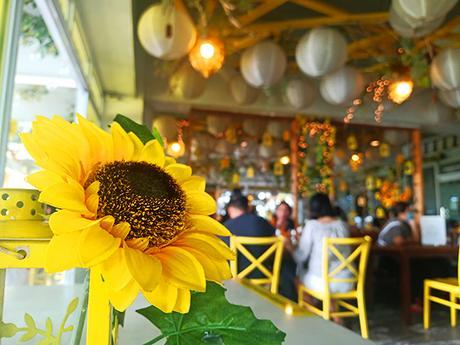 sunflower at yellow lantern cafe