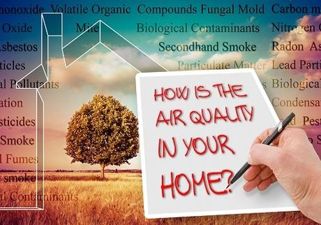 Maintaining Indoor Air Quality: Handy Way To Ensure Hygiene