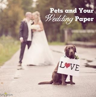 Pets and Your Wedding Paper