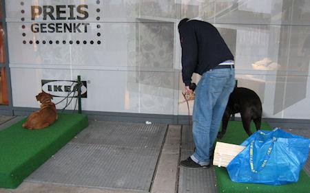 IKEA Germany Provides 'Dog Parking' Area For Customers