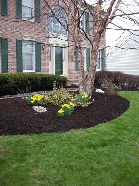 Black Mulch Backyard Ideas : when people ask they are black mulch and rubber mulch