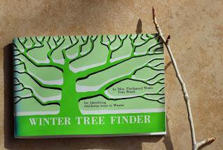 Tree-following: Let it Snow!!