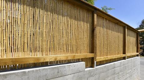 Breaking Down Exterior Basics – Most Popular House Fencing Options