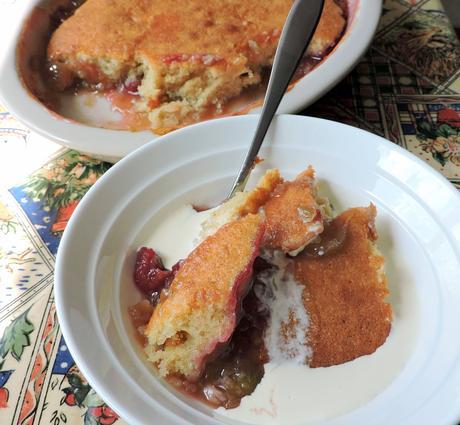 Raspberry & Rhubarb Pudding Cake