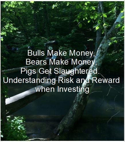 Bulls Make Money, Bears Make Money, Pigs Get Slaughtered.  Understanding Risk and Reward when Investing